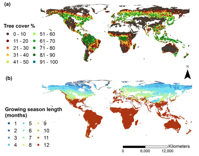 New Article: Climate seasonality, fire and global patterns of tree cover