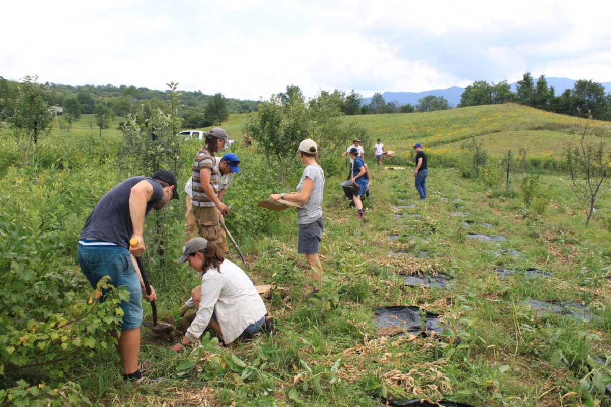 First offering of Agroecology Graduate Certificate Introductory Course