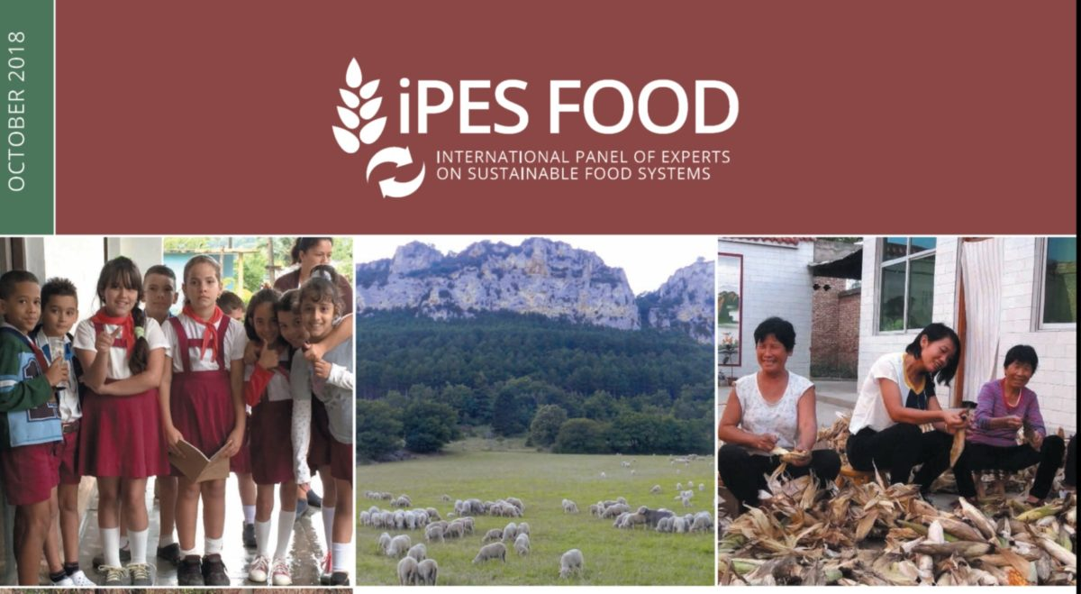 NEW REPORT from IPES-Food: Seven case studies of agroecological transition