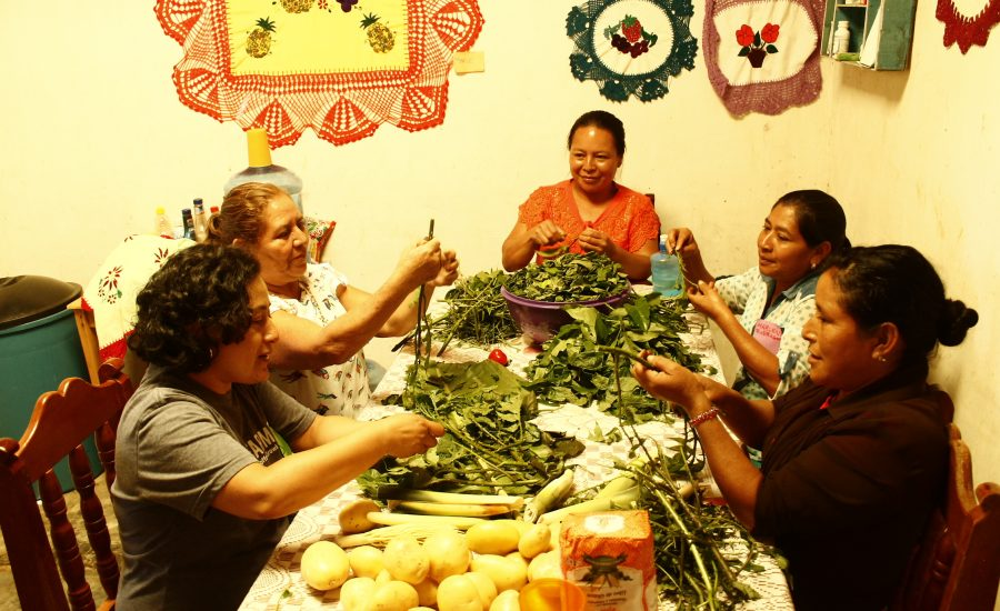 Women cooking traditional food with local ingredients in Laguna del Cofre, Mexico, as part of the activities of a learning exchange among farmers and research partners from Mexico, Nicaragua, and the US (2019). Photo: Alejandra Guzmán Luna