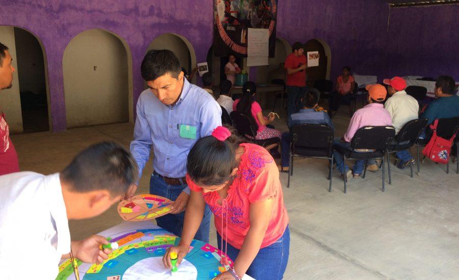 A focus group around a circular agricultural calendar in Matazanos, Chiapas, Mexico (2018). Photo: Janica Anderzén