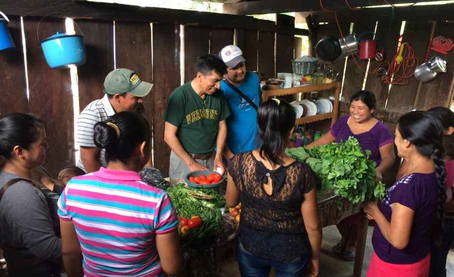 A focus group around the uses and benefits of wild foods in Zapata, Chiapas, Mexico (2018). Photo: Janica Anderzén