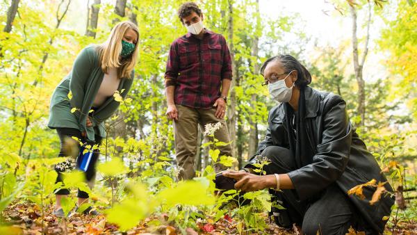 Lesley-Ann Dupigny-Giroux examines foliage while Gillian Galford and Joshua Faulkner look on