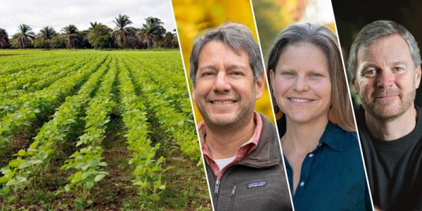 Image of three UVM professors on a background of a field of crops