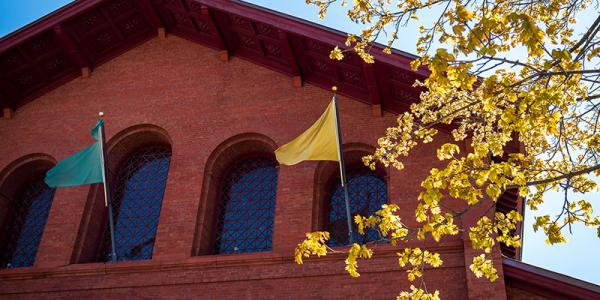 Green and gold flags fly on UVM's Royall Tyler Theater with blooming tree in foreground