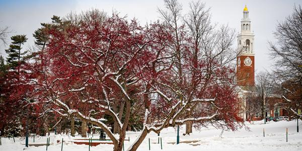 UVM Green in winter, with Ira Allen tower in distance