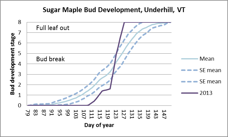 Main page image for Tree Phenology Monitoring: Bud development