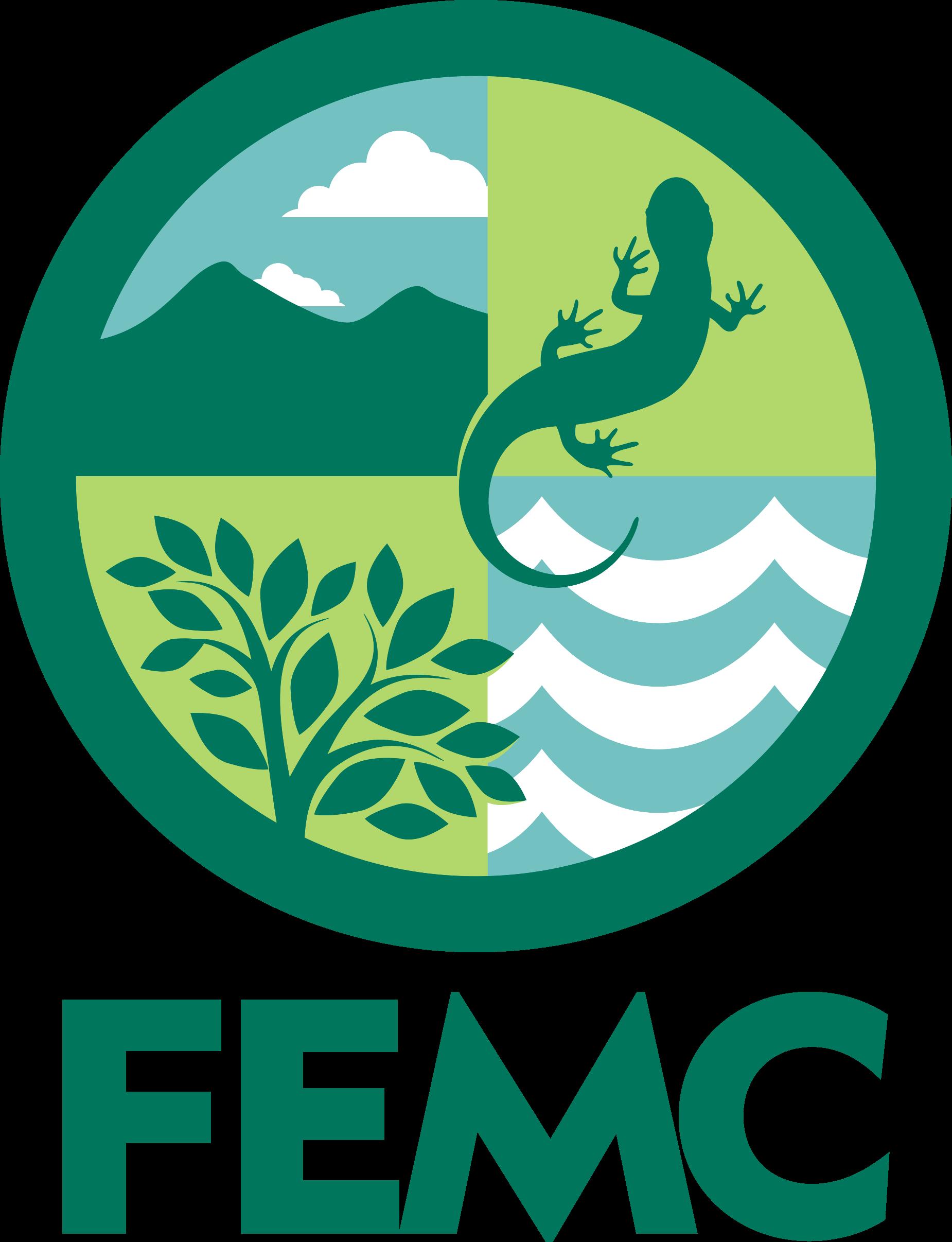 FEMC - Dataset -ArcGIS python script model - Overview