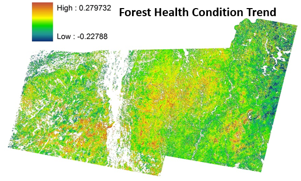 Main page image for Northeastern Forest Health Trend Index Derived from Landsat Imagery