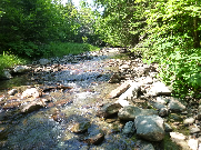 Quiet brook