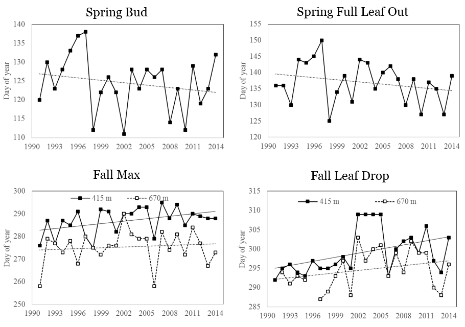 Long-term trends in the timing (mean day of year) of spring and fall phenological events for sugar maple from 1991 to 2014. Spring bud burst (top left) and full leaf out (top right) are assessed yearly at lower elevation (415m), with linear trend line shown. Fall maximum coloration (bottom left) and leaf drop (bottom right) yearly data are shown for sugar maple at two elevation (415m and 670 m) as well as a linear trend line in both.