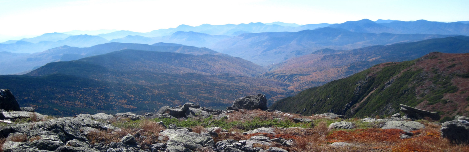 view from White Mountains National Forest