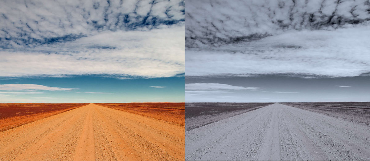 Photograph of a road, EPJ Data Science