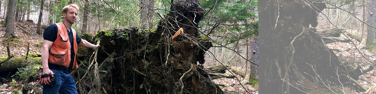 Bill Keeton in woods next to tip-up mound