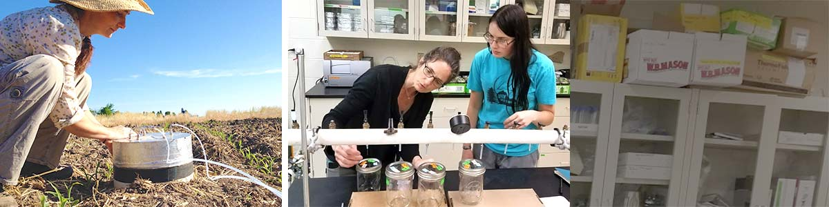 Carol Adair conducts research in field and lab