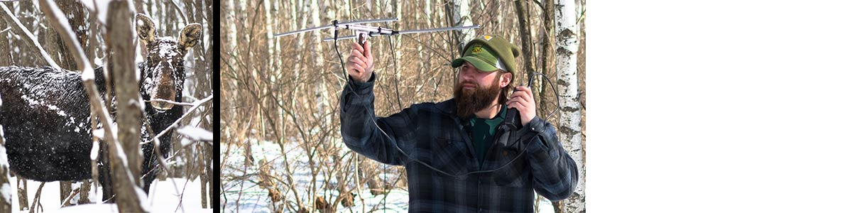 Moose and Chris Lampart with radio-telemetry equipment