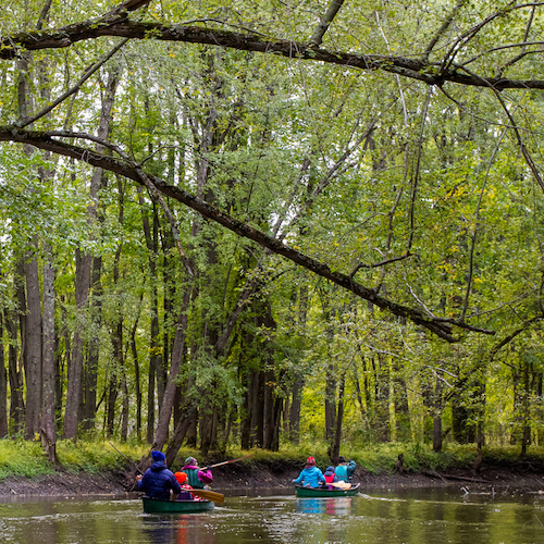 students paddling down a wooded river