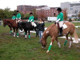 Uvm Equestrian Team Department Of Animal And Veterinary
