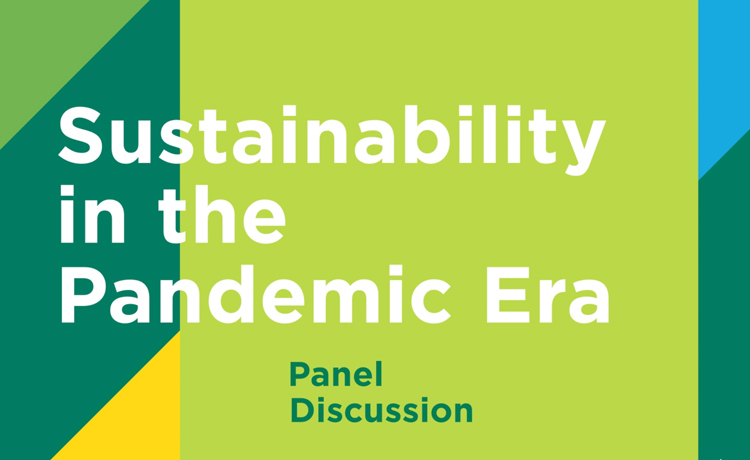 Teaser image for the Sustainability in the Pandemic Era panel discussion