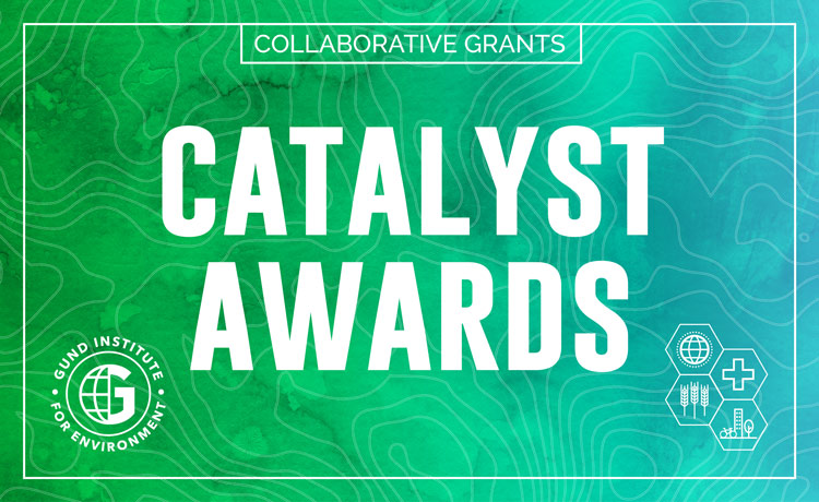 Promotional Graphic for Gund Catalyst Awards