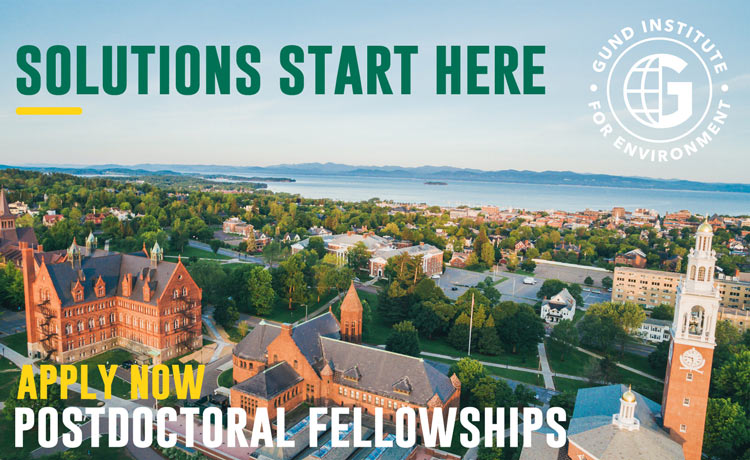 Promotional imagery for Gund Postdoctoral Fellowships