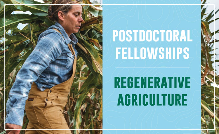Promotional graphic for Postdoctoral Fellowships in Regenerative Agriculture