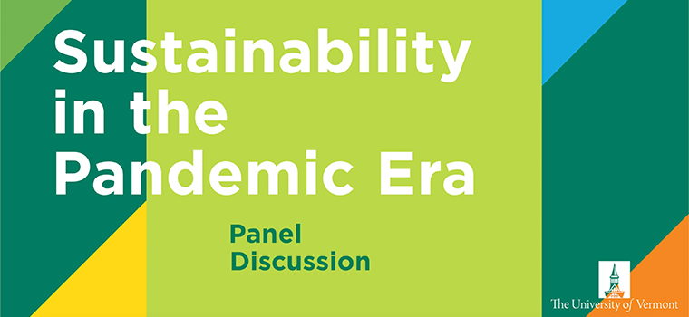 Promotional imagery for the Sustainability in the Pandemic Era discussion