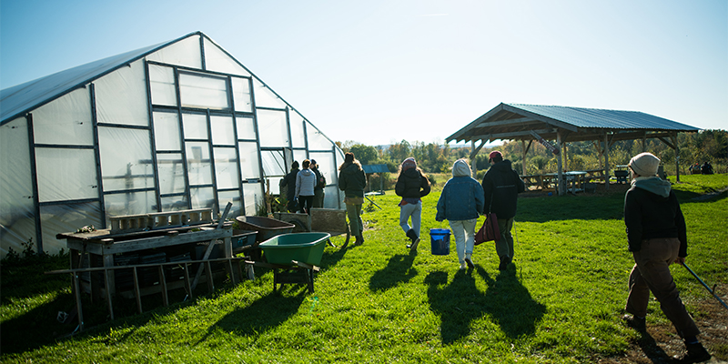 Student researchers walking towards a greenhouse.