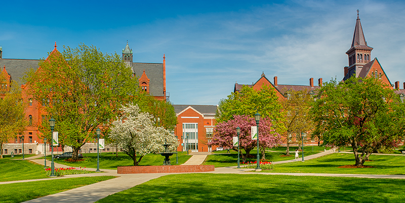 campus green in spring