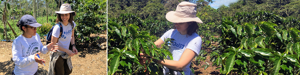 QuEST Trainee, Natalia Aristizabal collaborates with Tropical Agricultural Research and Higher Education Center (CATIE)