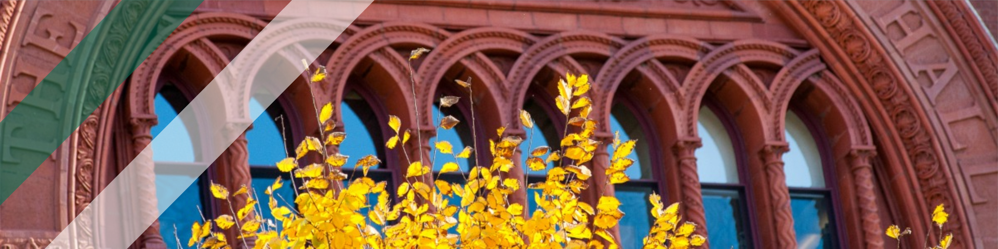 Red brick arch way with yellow leaves in the foreground.