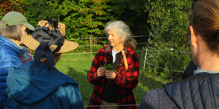 image description: kimberly hagen standing outside in a field talking to a group, wearing a red plaid jacket