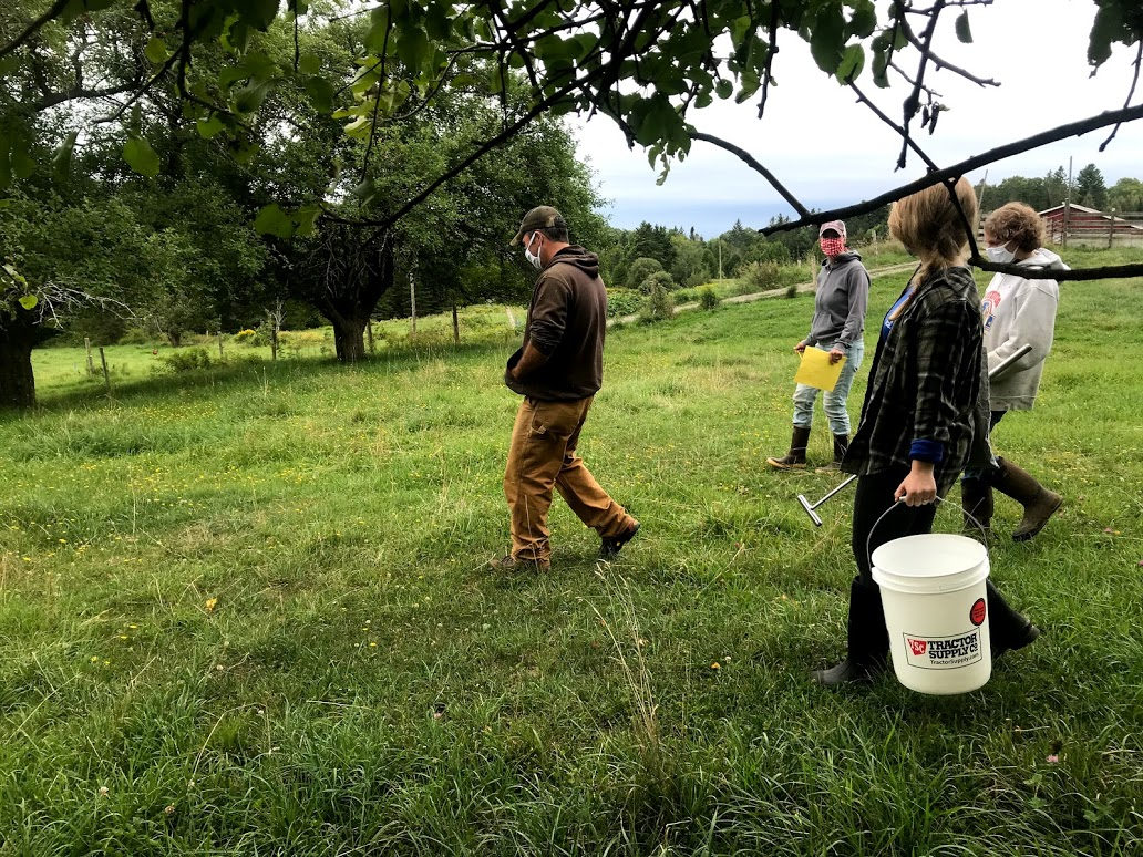 four masked people walking in a green pasture, one of whom is holding a large white plastic bucket and soil probe