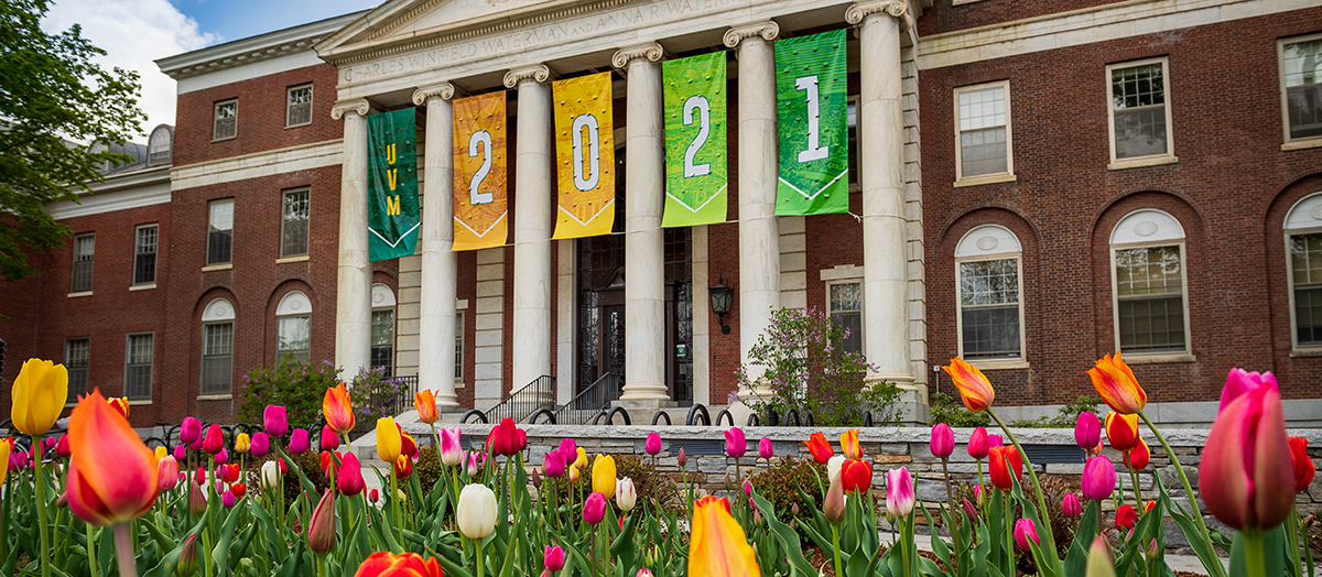 Banners reading, UVM 2021, hang on the front of Waterman with spring tulips in foreground
