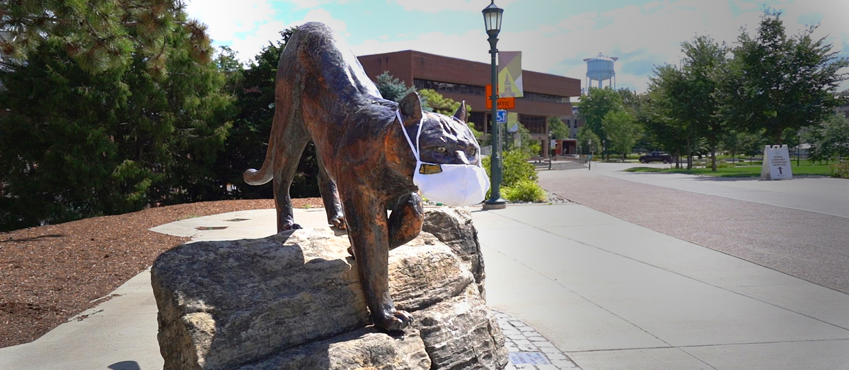 Bronze Catamount statue on UVM's Central Campus wears a white facial mask