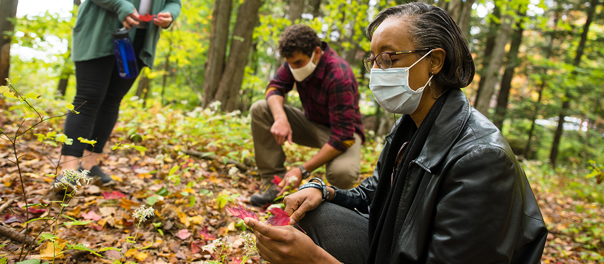 Trio of researchers study forest floor