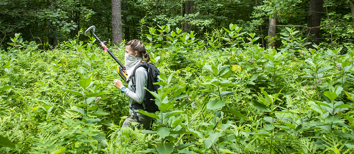 UVM Student Olivia Lopez walks through Jericho Research Forest with equipment