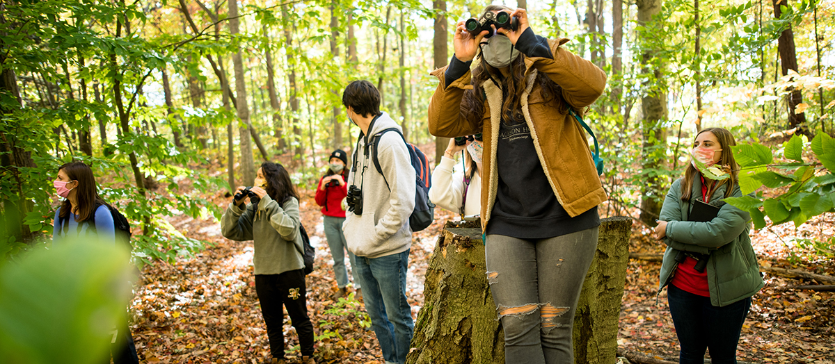Students look through binoculars at a barred owl in the woods of Burlington, Vermont