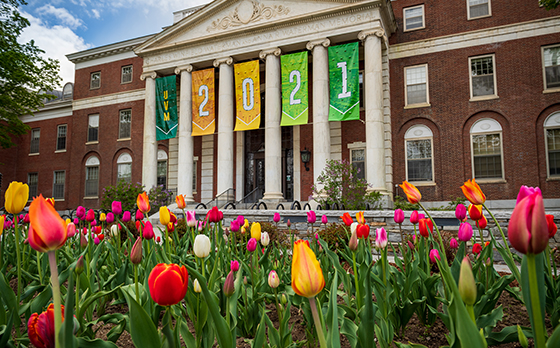 Banners reading, UVM 2021, hang on front of Waterman Building with colorful spring tulips in foreground