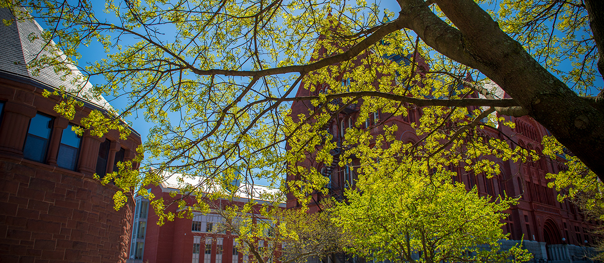 Spring on University of Vermont campus