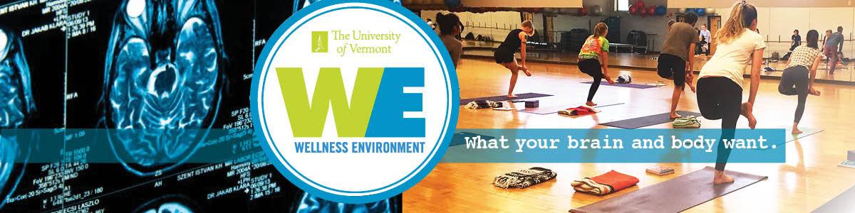 Wellness Environment