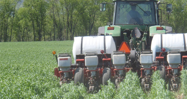 Crop, Soil & Pasture