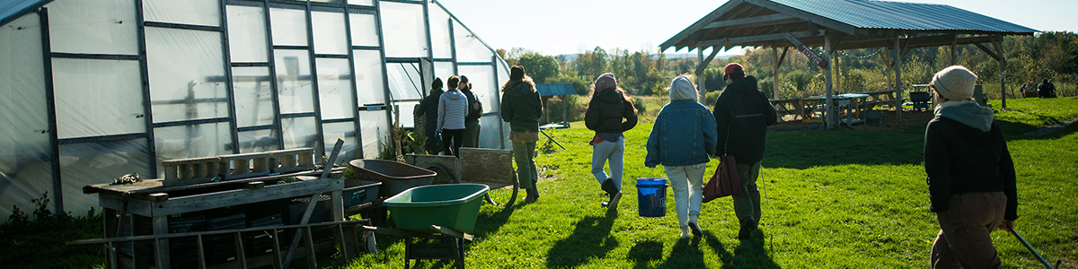 Students walking into a greenhouse on a sunny day