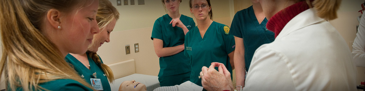 Nursing students in the clinical simulation laboratory