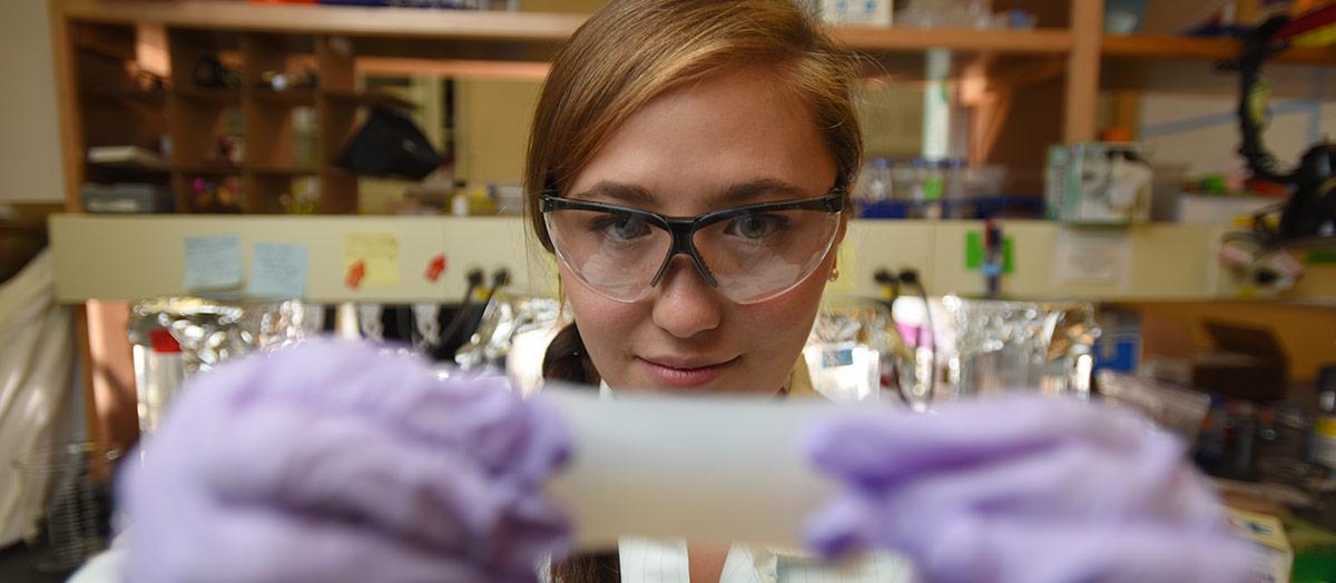 Biomedical engineering at UVM