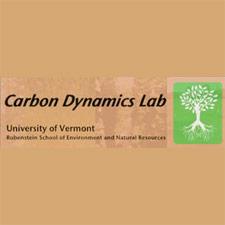 Carbon Dynamics Laboratory