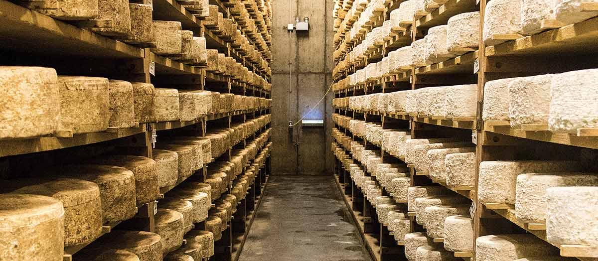 The cheese cellars at Jasper Hill