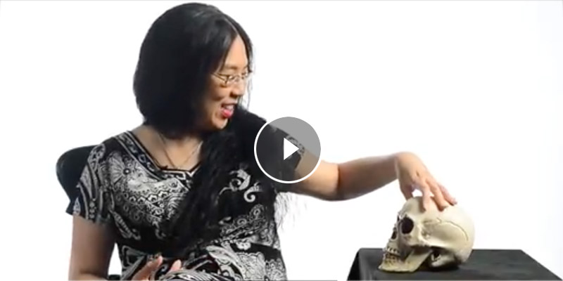 Angeline Chiu with her plastic skull used in class.