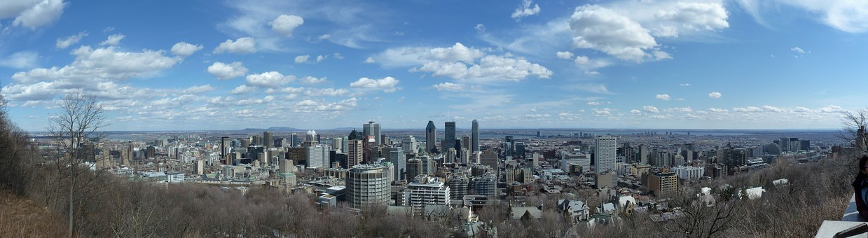 Montreal McGill University Skyline