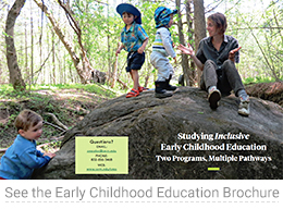 Early Childhood Education Brochure 2017